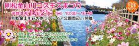 平成30年則松金山川コスモスまつり開催のご案内